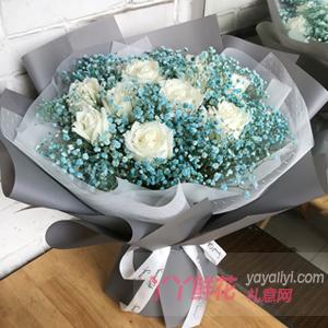 守侯你的幸福-11朵白玫瑰藍色滿天星