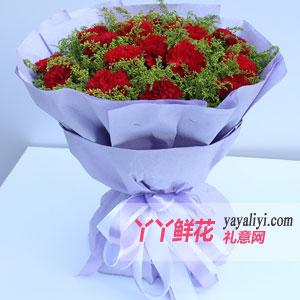 笑靥如花-订花19枝红色康乃馨