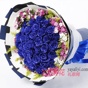 33朵藍色妖姬配相思梅黃...