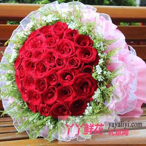 爱的天空-鲜花33朵红玫瑰