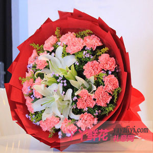深情眷顾-鲜花速递19枝粉康乃馨3朵百合