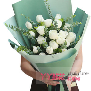 天使:19朵白玫瑰鮮花預定