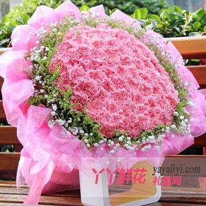 鲜花-99朵粉色康乃馨鲜花预定【热销】