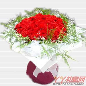 光辉母爱-100朵红色康乃馨花束在线预定