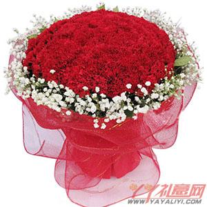健康长久-鲜花99朵红色康乃馨