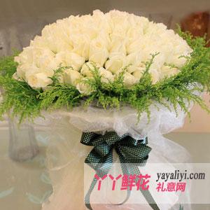 你我的约定-鲜花99朵白玫瑰情人节鲜花