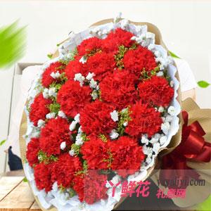 親情問候-19朵紅色康乃馨送花
