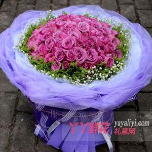 紫是爱你-66朵紫玫瑰