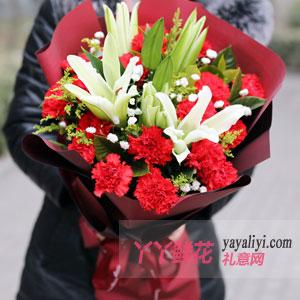 溫情祝福 - 19朵紅色康乃馨6朵百合紅色包裝