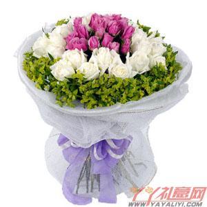 鮮花19朵紫玫瑰19朵白...