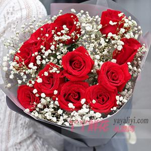 11朵紅玫瑰配滿天星