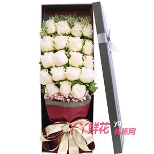 19朵白玫瑰搭配粉色石竹...
