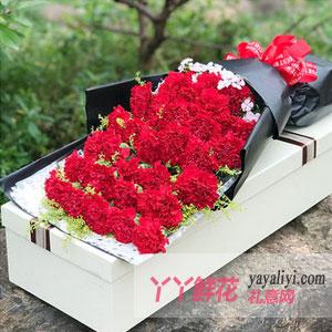 33枝红色康乃馨礼盒