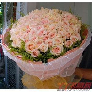 鲜花99枝香槟玫瑰网上订花