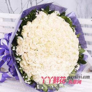 鲜花99枝白玫瑰在线预订