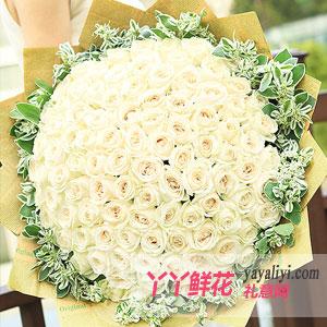 相爱时光-鲜花99枝白玫瑰预订