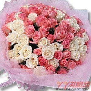 鲜花66朵粉玫瑰33朵白...