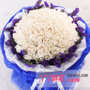 99朵白玫瑰鲜花预定