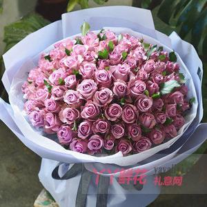 99朵紫色玫瑰適量綠葉