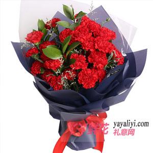 33朵紅色康乃馨情人草點綴