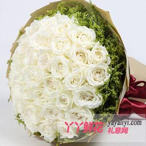 莲的梦-33朵白玫瑰鲜花速递