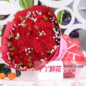 鮮花33朵紅色康乃馨免費送花