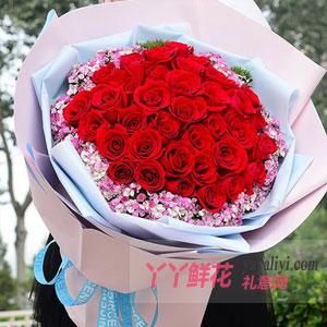 一往深情-预订33朵红玫瑰配相思梅