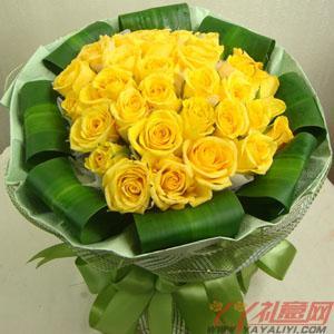 33朵黃玫瑰