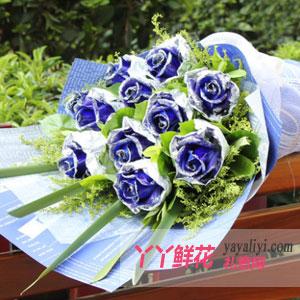 蓝色梦幻-11朵蓝色妖姬
