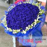 鲜花99朵蓝玫瑰免费配送