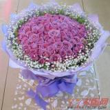 鲜花网99枝紫玫瑰