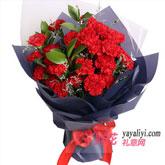 33朵红色康乃馨情人草点缀