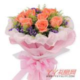 同城配送11枝粉玫瑰