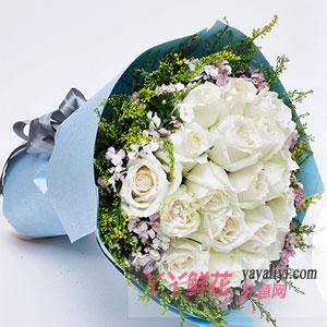 鮮花速遞19朵白玫瑰