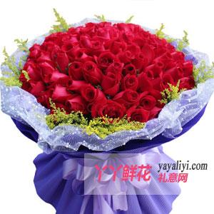 我的甜心-求婚送花99枝红玫瑰