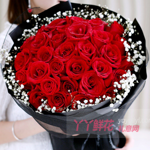 33朵紅玫瑰搭配滿天星黑色網紗