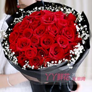 思念不變-33朵紅玫瑰搭配滿天星黑色網紗