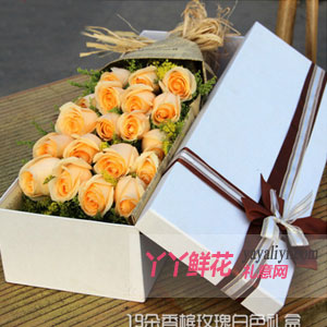 鲜花速递19枝香槟玫瑰礼盒
