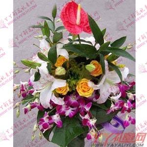 讲台花-西安讲台花1枝红掌3枝多头白百合6枝黄玫瑰