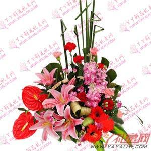 鮮花8枝康乃馨2枝百合