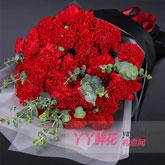 33支紅色康乃馨尤加利葉搭配