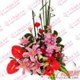 鲜花8枝康乃馨2枝百合