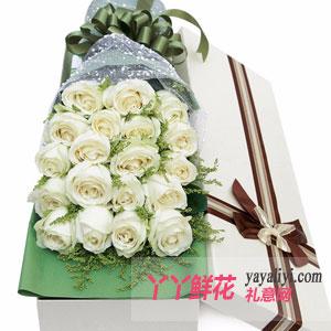 19朵白玫瑰白色礼盒