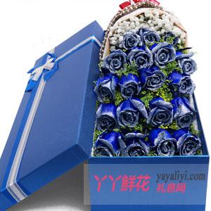蓝色情缘-鲜花店19朵蓝色玫瑰礼盒