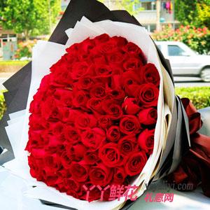 一百天紀念日送99枝紅玫瑰鮮花速遞