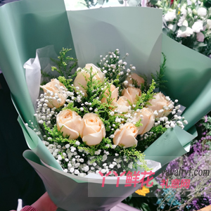 香槟玫瑰合适送母亲吗?