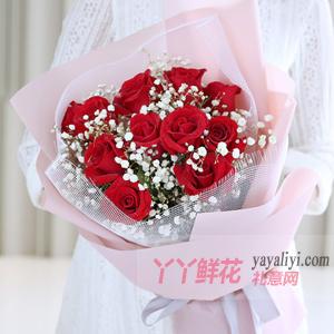 11朵紅玫瑰搭配白色滿天...