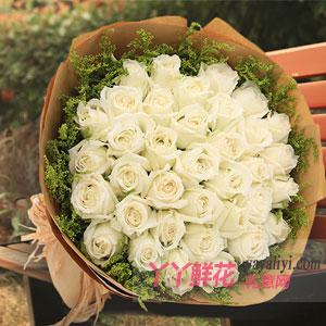 可爱的你-鲜花预订33支白玫瑰