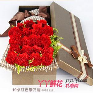 19枝红色康乃馨礼盒鲜花...