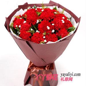 鲜花速递19支红色康乃馨